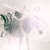 Into the Wild: Awesome Animal Photo-Manipulations