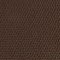 Create Your Own Leather Texture Using Filters