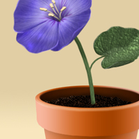 Create a Flowerpot From Scratch in Photoshop