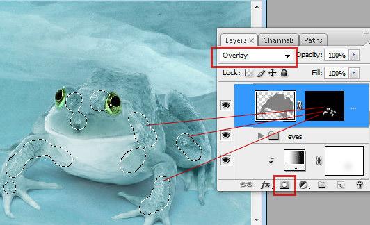 1 30 Chú Ếch Bắc Cực trong Photoshop