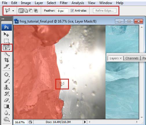 1 7 Chú Ếch Bắc Cực trong Photoshop