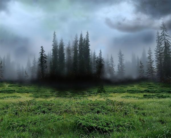http://d2f8dzk2mhcqts.cloudfront.net/217_Forest_Fairy/03.jpg