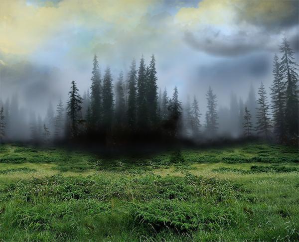 http://d2f8dzk2mhcqts.cloudfront.net/217_Forest_Fairy/04b.jpg