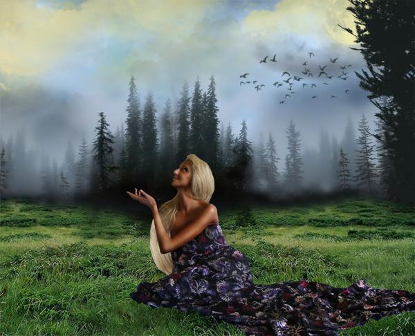 http://d2f8dzk2mhcqts.cloudfront.net/217_Forest_Fairy/14.jpg
