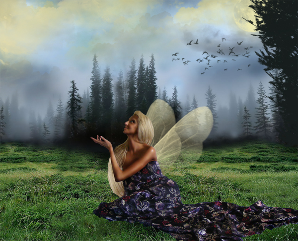 http://d2f8dzk2mhcqts.cloudfront.net/217_Forest_Fairy/15.jpg