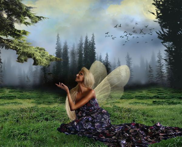 http://d2f8dzk2mhcqts.cloudfront.net/217_Forest_Fairy/17b.jpg