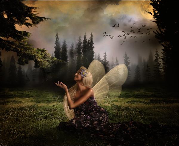 http://d2f8dzk2mhcqts.cloudfront.net/217_Forest_Fairy/26.jpg