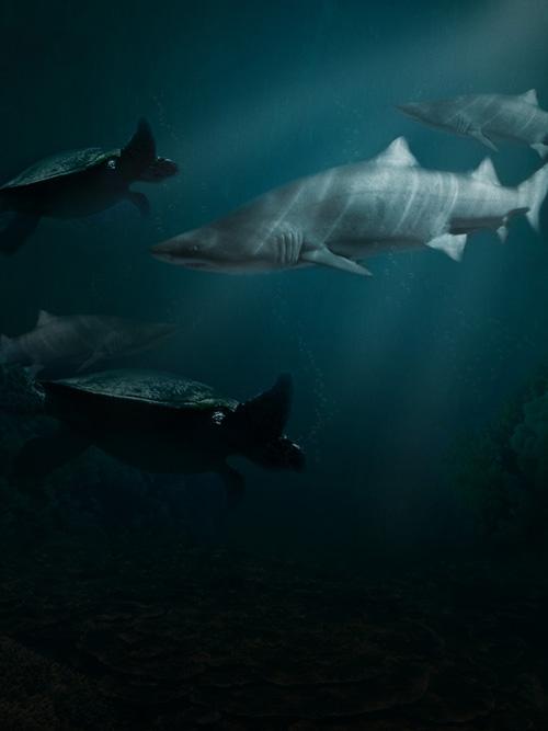 Create an Eerie Underwater Composition in Photoshop – Screencas