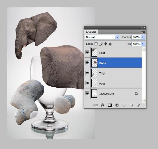 elephant 11 Tạo Một Ly Kem Hình Chú Voi trong Photoshop