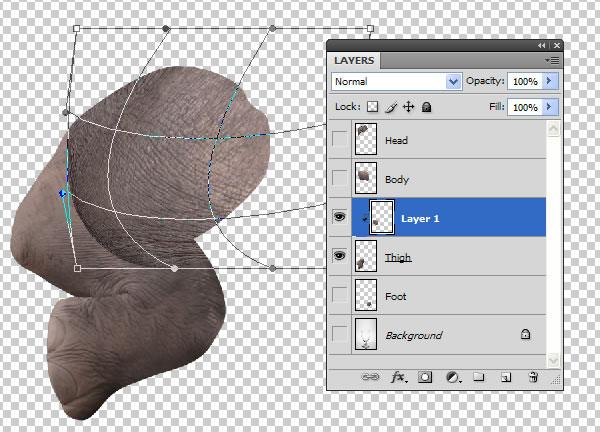 elephant 18a Tạo Một Ly Kem Hình Chú Voi trong Photoshop