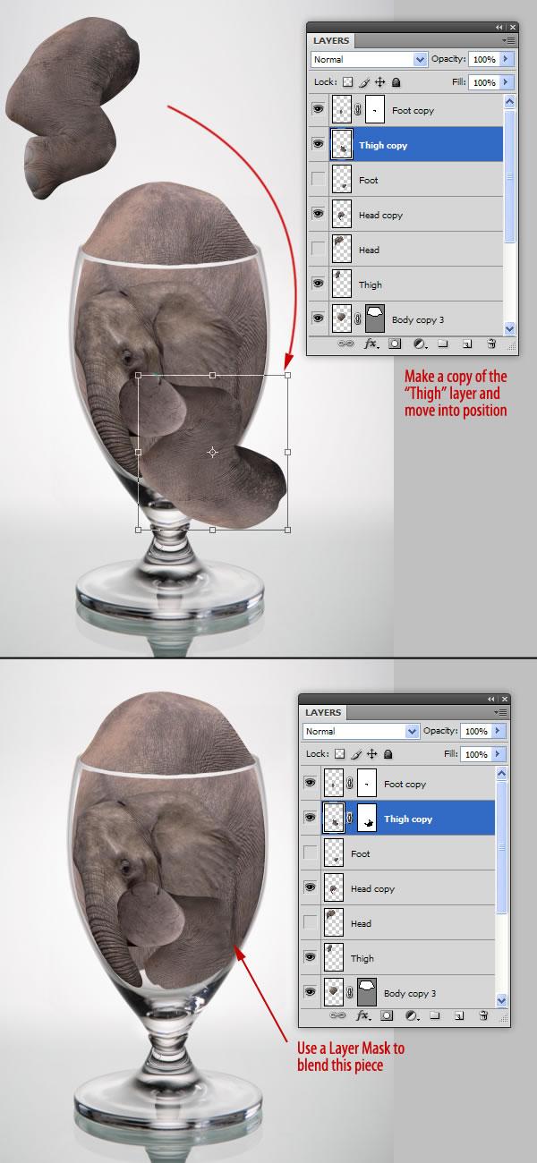 elephant 29 Tạo Một Ly Kem Hình Chú Voi trong Photoshop