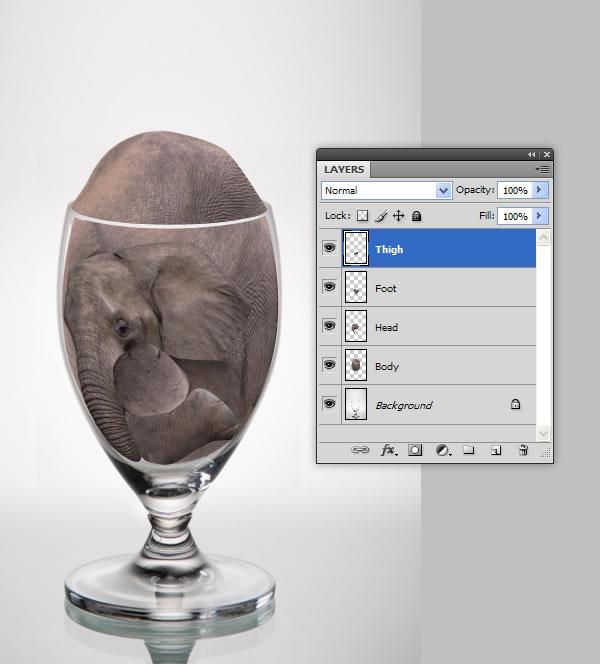 elephant 33 Tạo Một Ly Kem Hình Chú Voi trong Photoshop