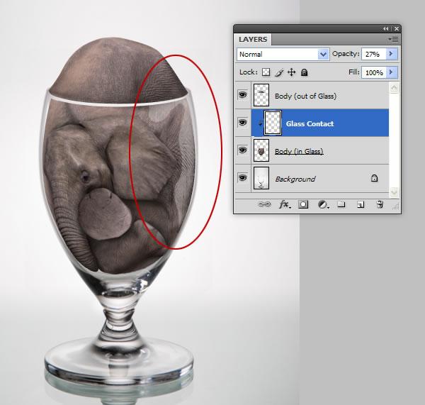 elephant 38b Tạo Một Ly Kem Hình Chú Voi trong Photoshop